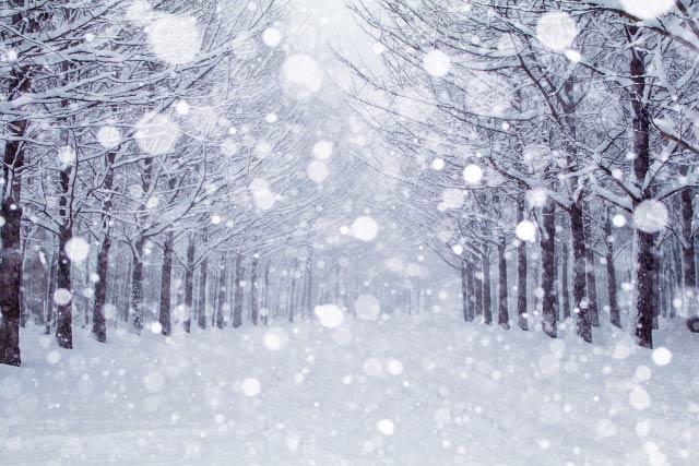 雪の季語一覧・天文、地理(冬の...