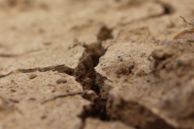 乾いてひび割れた地面