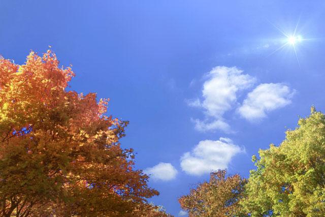 青空に太陽と紅葉